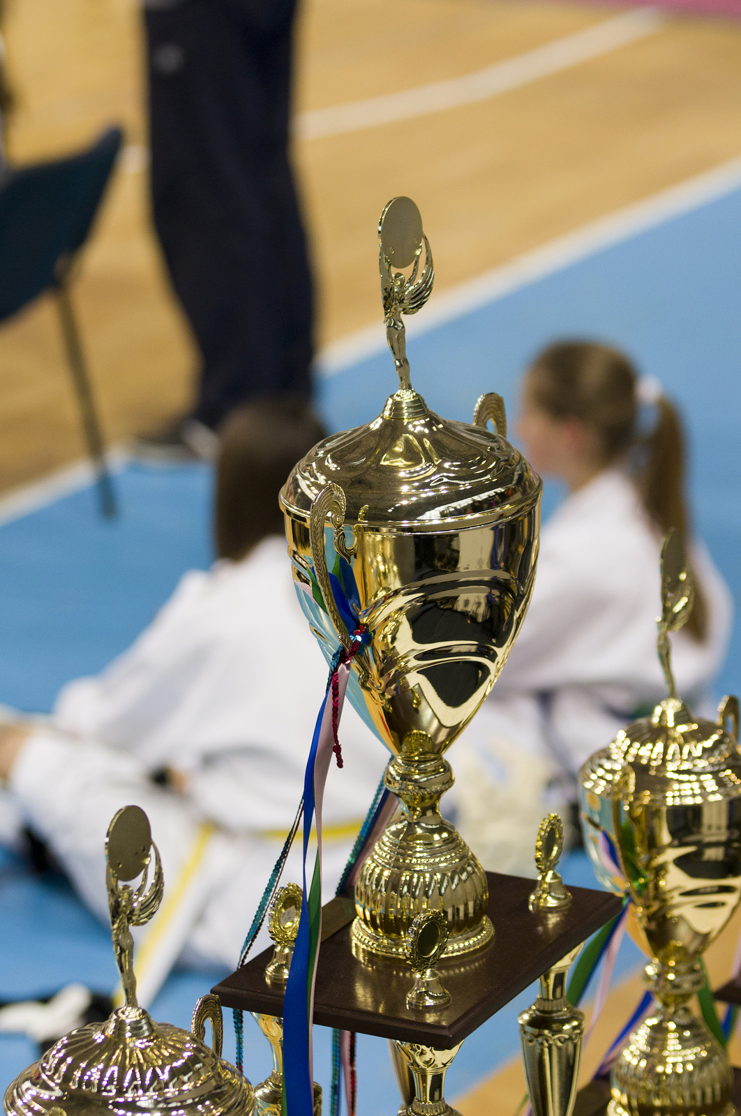 Golden championship cups arranged on table and two taekwondo fighters in background ** Note: Soft Focus at 100%, best at smaller sizes